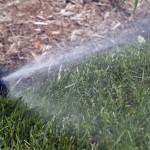 Sprinklers Watering Front Lawn