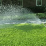 Lawn Sprinkler on Front Lawn