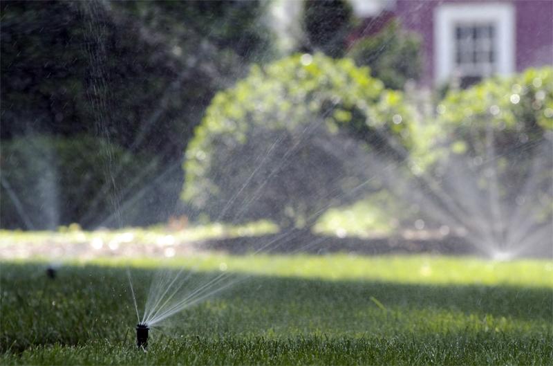Lawn Sprinkler System