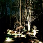 Landscape Lighting by Trees
