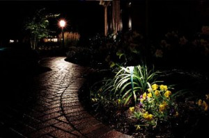 Custom Walkway Lighting